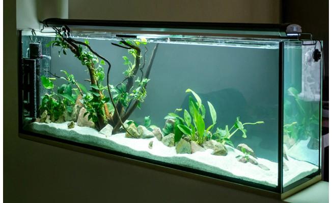 acvariu-AL190L_652x652_1